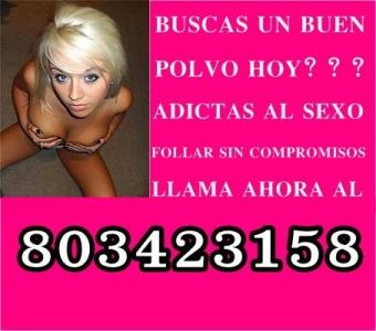 Sexo telefónico con chicas de tu ciudad NUMERO 8 0 3 - 4 2 3 - 1 5 8
