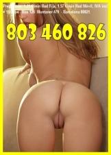 LINEA EROTICA SIN ESPERAS 803 460 826, SEXO TELEFONICO LAS 24H CHICAS CACHONDAS