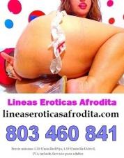 Madura viciosa. cam xxx, shows webcam y videollamada. Sexo telefonico 803460841
