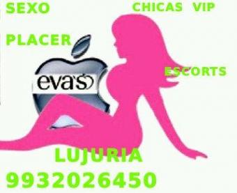 ESCORTS EVAS SEXO PLACER Y LUJURIA LLAMA YA