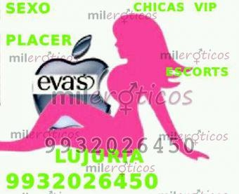 EVAS LAS MEJORES Y MAS BELLAS ESCORTS 9932026450