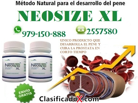 NEOSIXE XL  TELF 2557580 - 931568025