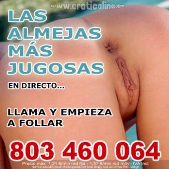 ALMEJAS JUGUETONAS EN DIRECTO