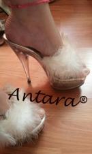 para mejores informes llámame  y0 s0y Antara