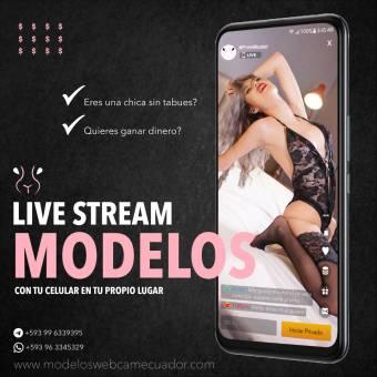 Modelo webcam studio Quito Mr Pink Rabbit